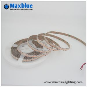 DC24V 3528 240LEDs/M Single Row LED Strip Light pictures & photos
