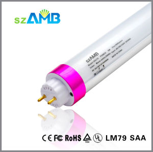 5years Warranty T8 LED Tube Light with 110lumen/W