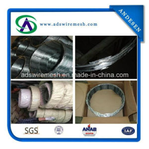 Stainless Steel 430 Cbt-65 Razor Wire pictures & photos