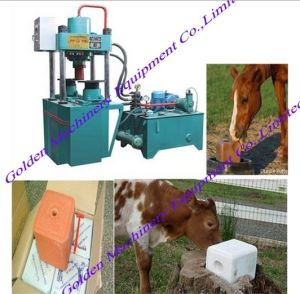 Selling Animal Nutrition Hydraulic Mineral Licking Salt Block Press Machine pictures & photos