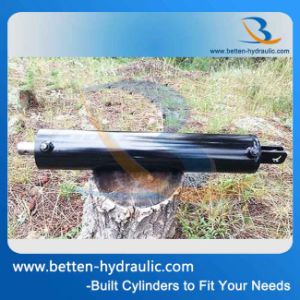 Log Splitter Hydraulic Cylinder pictures & photos