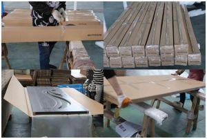 High Quality Flush MDF Door PVC (SC-P016) pictures & photos