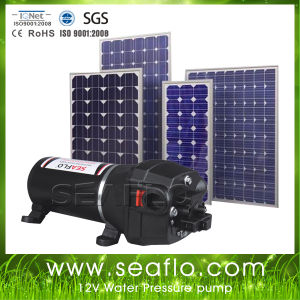 Irrigation Systems for Seaflo 12V Mini Solar Sprayer Water Pump pictures & photos