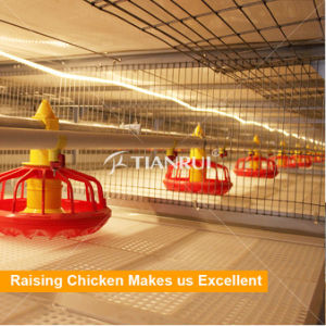 Tianrui Raising Broiler Poultry Automatic Birds Feeding System pictures & photos