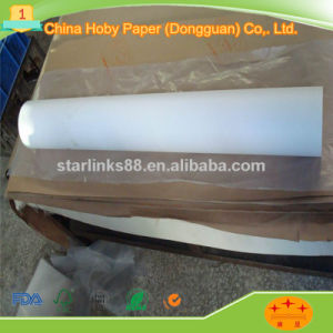 55GSM Plotter Paper in Roll with Good Quality pictures & photos