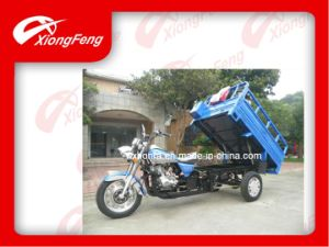 Cargo Tricycle/ Triciclo/ 150CC Tricycle (XF150ZH-2B) pictures & photos
