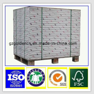 Best Price Virgin Pulp Food Grade Folding Box Board/Sbs/Ivory Paper Board pictures & photos
