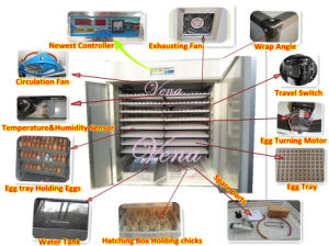 Christmas on Sale Hot-Selling Model Digital Fully Automatic Chicken Egg Incubator for 1000 Eggs pictures & photos