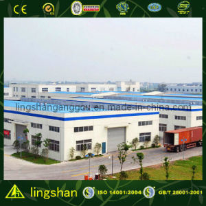 Steel Frame Prefabricated Workshop (LS-S-046) pictures & photos