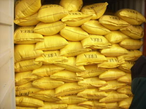 Factory Directly Supply Urea (Nitrogen: 46%Min) with SGS Test Report pictures & photos