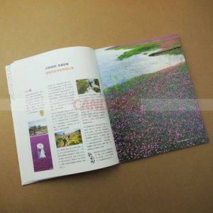 Full Color Magazine Printing Book Printing pictures & photos