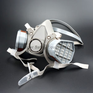 Double Cartridge Type Chemical Respirator Dual Cartridge Gas Mask Respirator (CR6200) pictures & photos