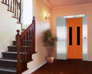 Stable & Standard Passenger Home/Villa Lift pictures & photos