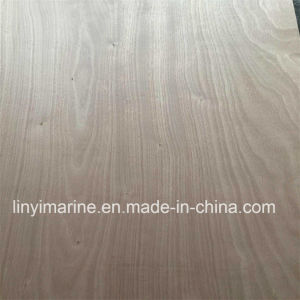 Door Size Plywood Red Hard Wood Face pictures & photos
