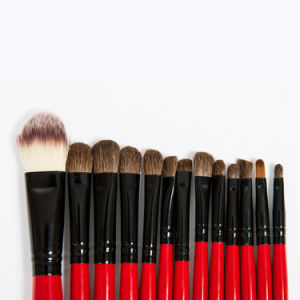 Wisdom 22PCS Cosmetic Brush with Black PU Case pictures & photos
