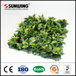 Outdoor Garden Decoration Fake Plastic Boxwood Hedge Covering pictures & photos