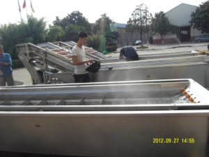 Roll Brush Washing Machine pictures & photos
