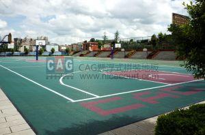 Cag PP Material Flooring Kindergarten Special Floor, RoHS/Ce Modular Flooring, Interlocking Flooring, Skid Resistance Floor