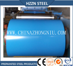En10169 Color Coated Steel Coils to European Market pictures & photos
