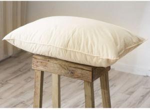 133X100 40/40s Cotton White Goose Down Pillow pictures & photos
