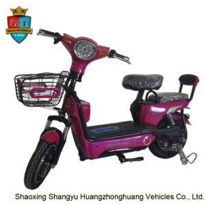 OEM Design Quality 350W Motor Electric Bike