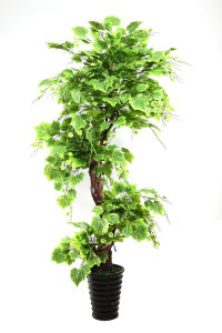 Artificial Potted Plants Bonsai pictures & photos