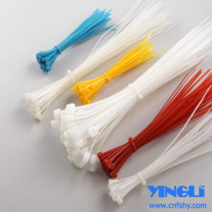 Approved by RoHS Nylon Cable Tie in 150mm pictures & photos
