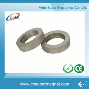 Samarium Cobalt Sintered Magnet SmCo Radial Magnet Ring pictures & photos