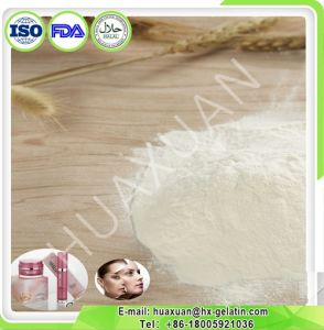 100% Fish Hydrolysate Collagen with More Than 90% Protein pictures & photos