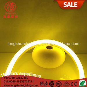 LED 220V 15*26mm U Shape IP65 Flex Sign Light for Chritmas Decoration pictures & photos