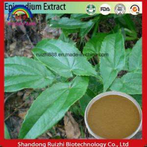 Icariin 50% 60% 80% 98% Epimedium Extract. Epimedium Extract Icariin 98% pictures & photos