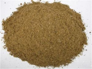 Animal Feed for Fish Making Machines pictures & photos