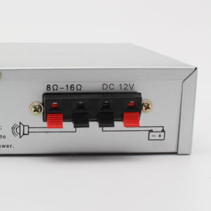 Hot Selling Car Audio MP3 Power Amplifier pictures & photos
