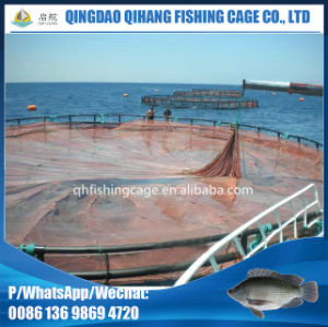 Aquaculture Fish Cage Farm with Floating Net Cage pictures & photos