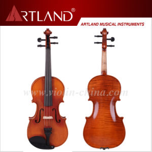 Advanced Violin (AV200) pictures & photos
