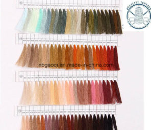 8s/3 12s/3 12s/4 20s/6 20s/8 Bag Sewing Thread pictures & photos