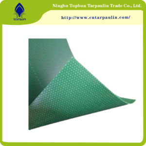 Factroy Price PVC PVC Coated Fabric for Truck Cover Tb029 pictures & photos