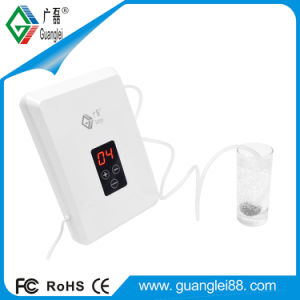 Ozone Generator Water Purifier (GL-3210) pictures & photos