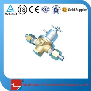 Cryogenic Vehicle Gas Cylinder Pressure Regulator Valve for LNG pictures & photos