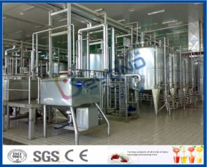 Small Milk Plant pictures & photos