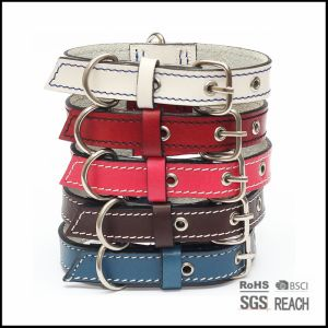 Custom Colorful Real Leather Pet Dog Cat Collars pictures & photos