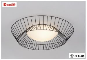 Metal&Opal Glass with Modern LED Pendant Ceiling Light pictures & photos