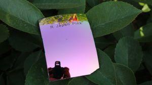Fashion Sunglasses Polarized Tac Lens Repalcement Lens (R Japan Pink) pictures & photos