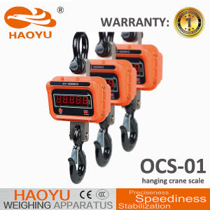1 Year Warranty Electronic Digital Crane Hanging pictures & photos