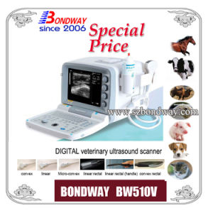 Vet Diagnosis Equipment Digital Veterinary Ultrasound Scanner pictures & photos