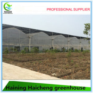 Hot Sale Plastic Film Mulit Span Agricultural Greenhouse pictures & photos