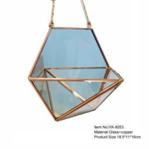 Micro Landscape Decor Tabletop Glass Terrarium Vase Manufacturer pictures & photos