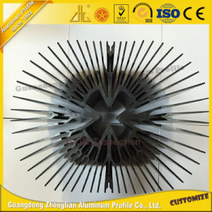 Customized Extrusion Aluminum Heat Sink for Building Materical pictures & photos