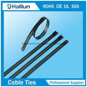 304 Stainless Steel Epoxy Coated Ladder Multi Barb Lock Cable Tie pictures & photos