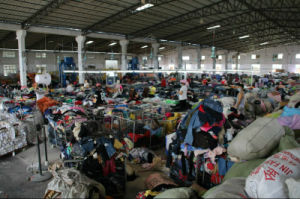 for Africa Recycling Sport Wear Used Clothing in Bales pictures & photos